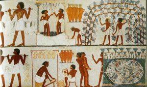 el vino en el antiguo egipto 2