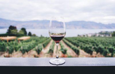 ¿Dónde hacen el vino más caro del mundo?