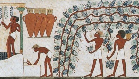 el vino en el antiguo egipto 1