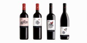 etiquetas-de-vinos-originales-Bles-organic-wine