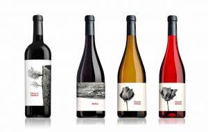 etiquetas-de-vinos-originales-terra-d-art