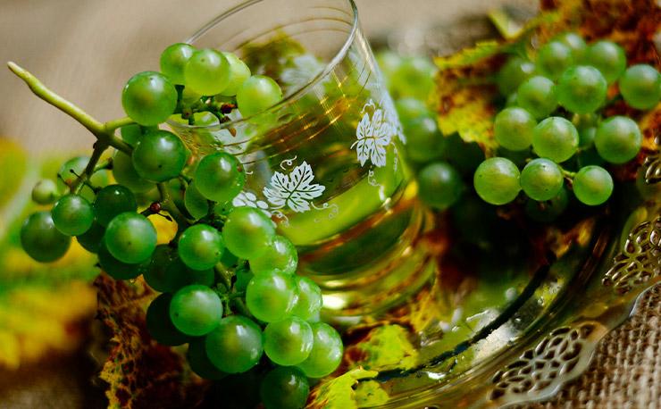Uvas para vinos blancos