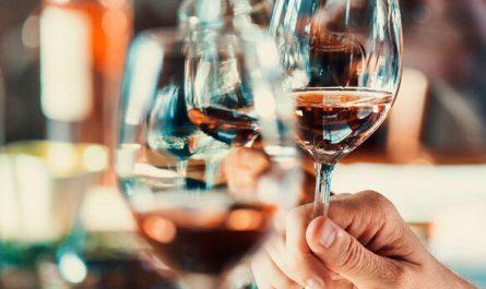degustación de vino todo sobre este arte
