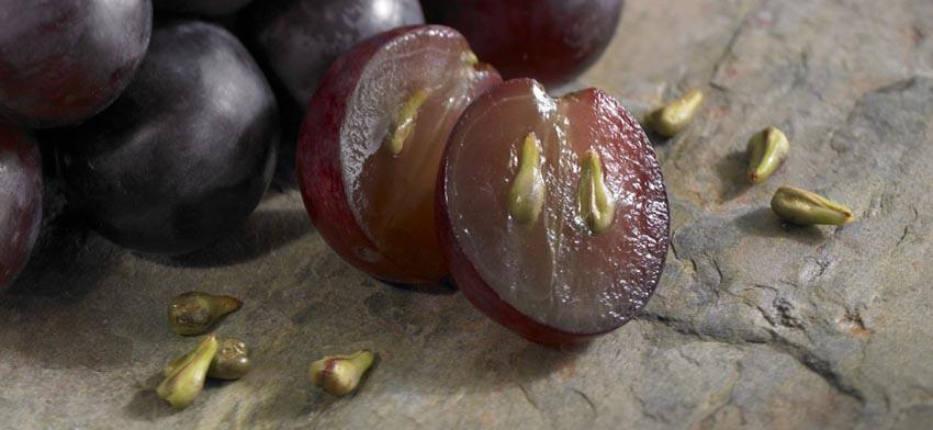beneficios de las semillas de uva